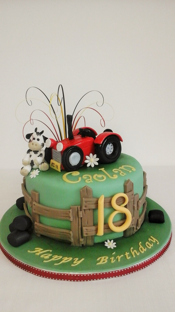 Farming themed Birthday Cakes Sligo